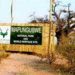 22. Mapungubwe  (Gail Nattrass)