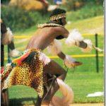 235.   Traditional dancing.  The Zulu Indlamu dance